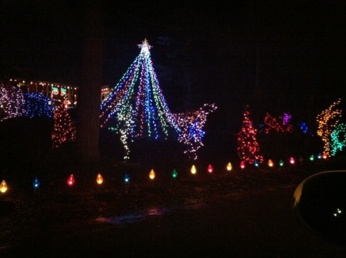 Christmas lights at the end of our street!  Music, flashing lights and everything!  We look forward to this every year.